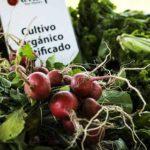 feria organica el trueque costa rica alimentacion directorio sustentable