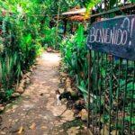 hospedaje ecologico nahual panama directorio sustentable