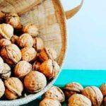 emporio seamos natura chile productos a granel directorio sustentable