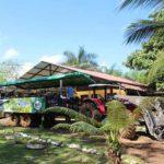 tour piña organica turismo costa rica directorio sustentable