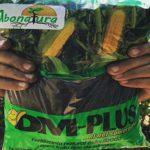 abonatura nicaragua abono insumos organico directorio sustentable