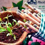 alles colombia ecotienda directorio sustentable