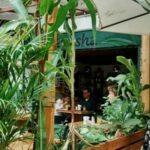 akasha nature colombia directorio sustentable