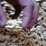 almacen al natural chile alimentacion directorio sustentable