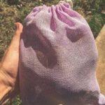 axolotl mexico directorio sustentable basura cero