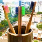 bamboolife peru directorio sustentable