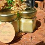 begonia cosmetica natural argentina