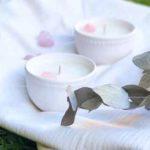 bhoga velas de soja argentina directorio sustentable