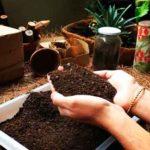 bioambientar colombia directorio sustentable