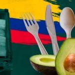 biofase colombia productos semilla aguacate directorio sustentable