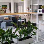 biotienda plantas argentina directorio sustentable