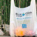 blue ocean argentina directorio sustentable