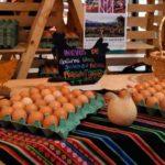 bravial granja familiar chile huevos campo