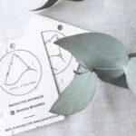 brote papel plantable argentina directorio sustentable