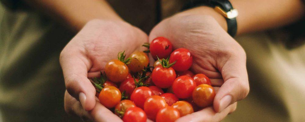 Ocho cosas que puedes hacer para participar en una gastronomía sostenible