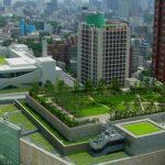 chaac simulaciones inc mexico certificadora leed edificios verdes directorio sustentable