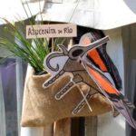 chicos naturalistas directorio sustentable argentina
