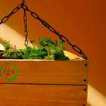 el hueon de los huertos chile directorio sustentable