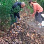 compost ciudadano uruguay directorio sustentable