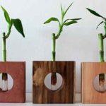 cruz toca madera directorio sustentable 2