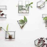 cut the glass argentina directorio sustentable