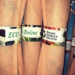 ecobolsas mexico directorio sustentable