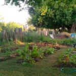 el rebrote agroecologia urbana argentina talleres directorio sustentable
