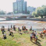 ecolink reciclaje social cordoba argentina directorio sustentable