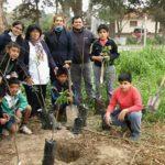 fundacion plan21 argentina directorio sustentable