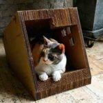 la jato del gatp peru directorio sustentable