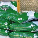 green chain chile humus de lombriz directorio sustentable
