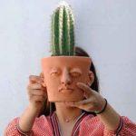 headplanter directorio sustentable 3