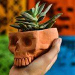 headplanter directorio sustentable 2