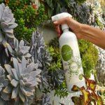 huertos de paz mexico agroecologia población vulnerable directorio sustentable