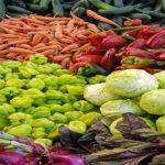 el rinconcito organico irazu costa rica alimentacion verduras directorio sustentable
