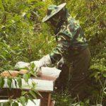 flor huarampata peru miel natural directorio sustentable