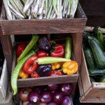 mercado drugstore organico certificado chile directorio sustentable