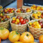 Mercado el 100 directorio sustentable 1