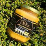 mexican honey bee company mexico miel directorio sustentable