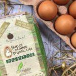 organic life ecuador frutas vegetales huevos organicos directorio sustentable
