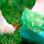 onai bolsas biodegradables mexico directorio sustentable