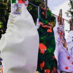 pitogue eco panales paraguay directorio sustentable