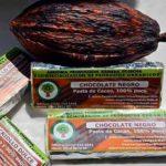 plantaciones organicas bravortela directorio sustentable 2
