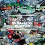 protrash directorio sustentable 1