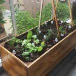 proyecto cultivarte directorio sustentable 3