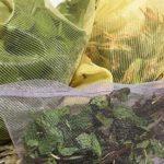 punto granel alimentacion cancun mexico directorio sustentable