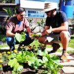 raices diseño regenerativo costa rica huertos talleres directorio sustentable