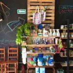 tienda raiz del valle mexico directorio sustentable