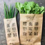 raizs brasil verduras organicas produtores locais directorio sustentable