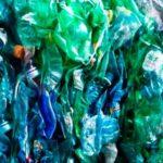 romano reciclaje argentina directorio sustentable